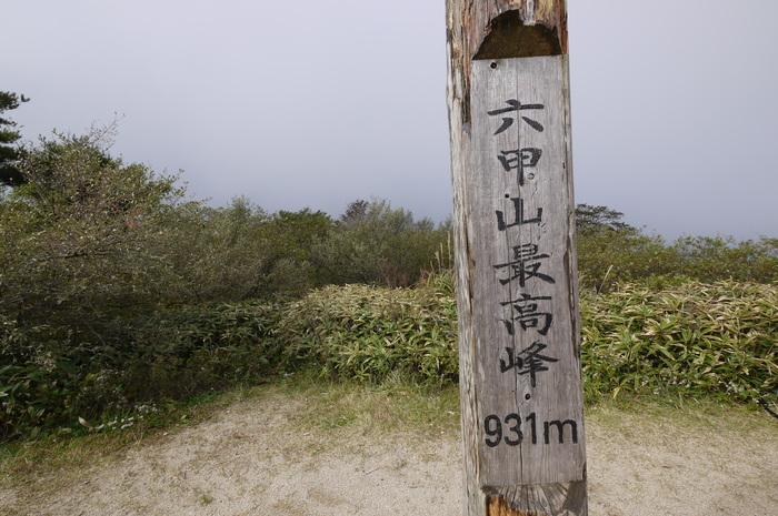 六甲山 芦屋川~有馬_e0214805_6582923.jpg