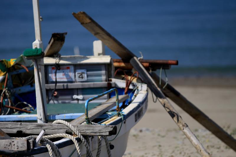 #1111 海へ・・・_b0177233_4431256.jpg