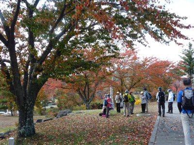 八ヶ岳周遊最終回・小淵沢駅へ!_f0019247_2321627.jpg