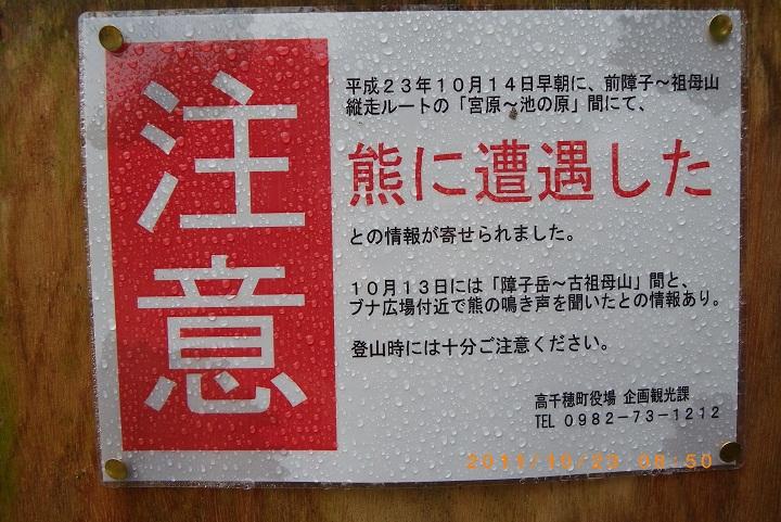 f0016066_0103655.jpg