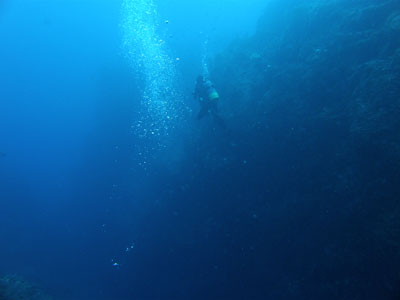 「今日の海に!バンザ~イ!」_b0033573_2253242.jpg