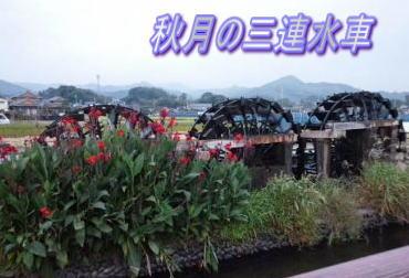 投稿)九州の皆さんにお知らせです!_d0070316_13292591.jpg