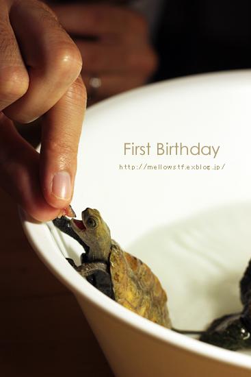 一歳のお誕生日。_d0124248_20455797.jpg