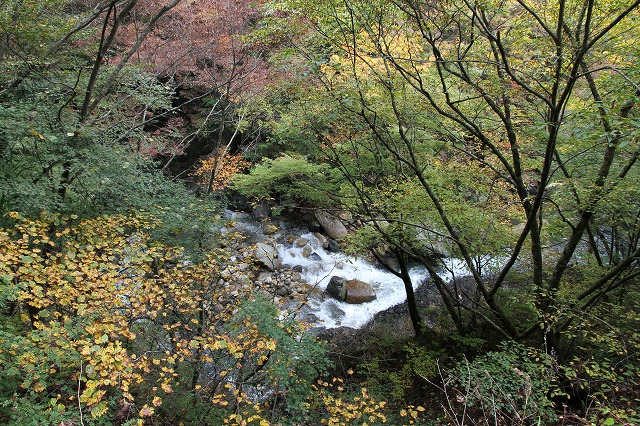 増富通仙峡の紅葉とみずがき湖の今・・・_b0100253_1629359.jpg