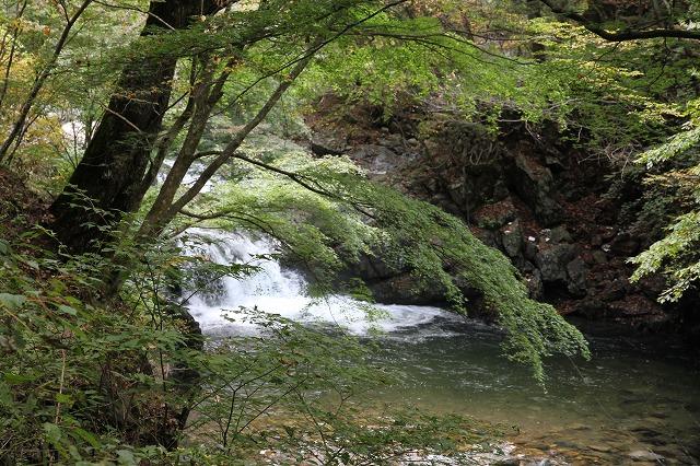増富通仙峡の紅葉とみずがき湖の今・・・_b0100253_1634209.jpg
