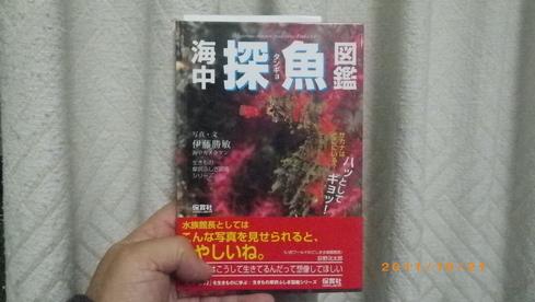 b0075059_21512195.jpg