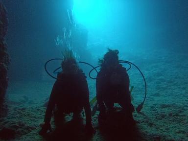 洞窟体験ダイビング_a0156273_1744465.jpg