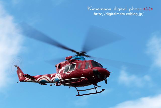 大空と大地のカーニバル2011_c0083985_6291835.jpg