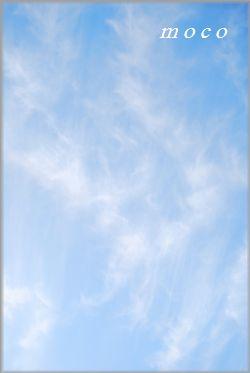 f0193597_1617827.jpg