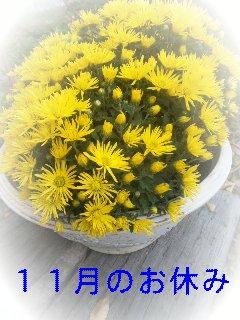 d0148408_1432875.jpg