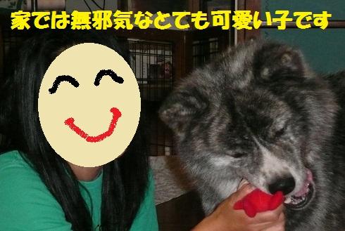 f0121712_7464687.jpg
