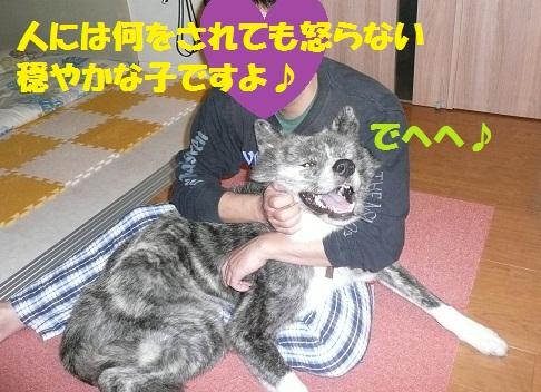 f0121712_759727.jpg