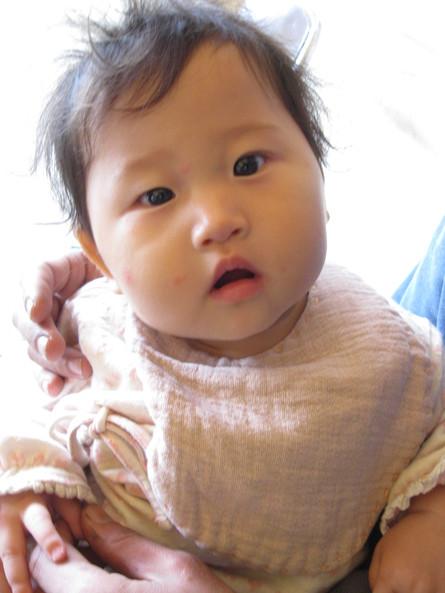 2011冒険家族~~「1日目」~~_a0125419_1249193.jpg