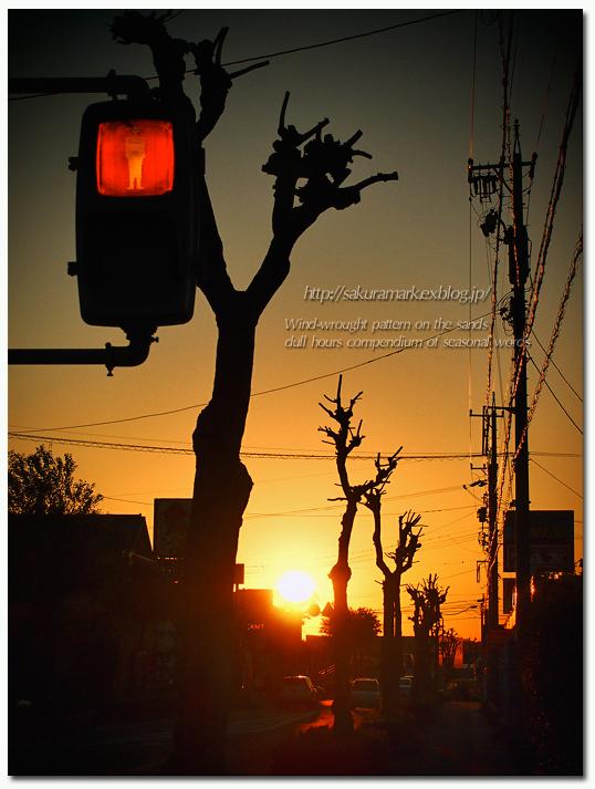 黄昏時の信号待ち。_f0235723_2053996.jpg