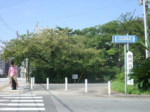 神戸サイクリング 75km_d0174462_2272573.jpg