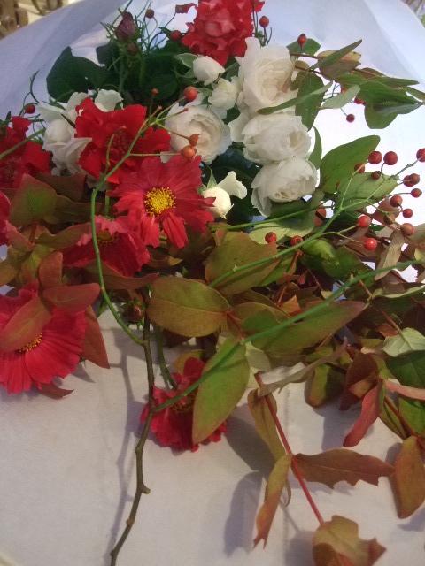 オークリーフ花の教室(赤いコスモス)_f0049672_1851665.jpg