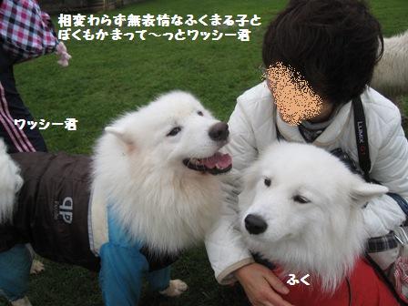 f0212597_4574815.jpg