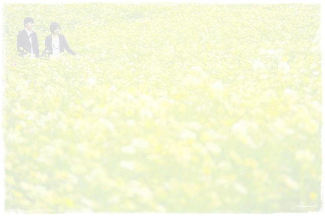 f0185802_2215178.jpg