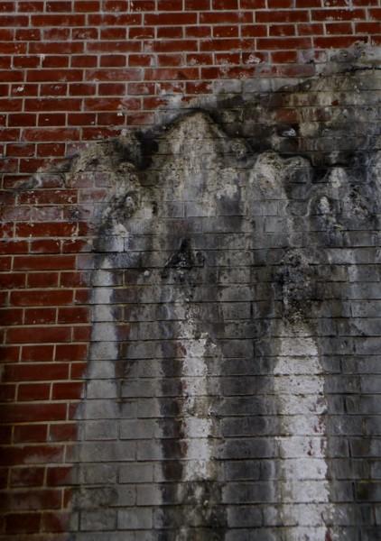 煉瓦壁の腐食_f0055131_8331933.jpg