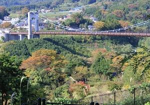 紅葉はまだまだ-秦野戸川公園_c0171849_15323138.jpg