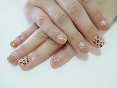 Leopard × Brown_a0239065_14295033.jpg
