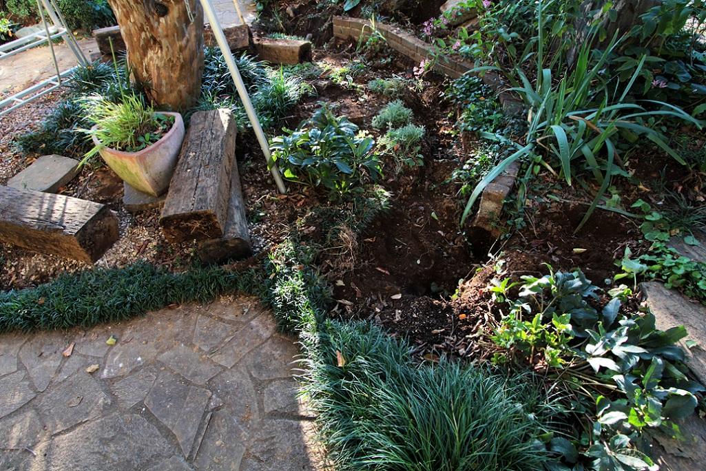 庭の大規模改修_a0107574_2039498.jpg