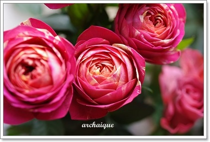 森の工房 お花の日!!_c0207890_245939.jpg