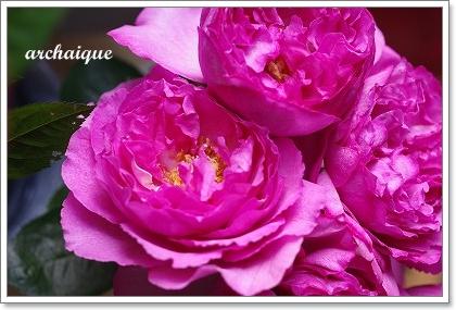 森の工房 お花の日!!_c0207890_251473.jpg
