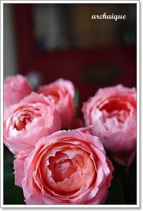 森の工房 お花の日!!_c0207890_25554.jpg