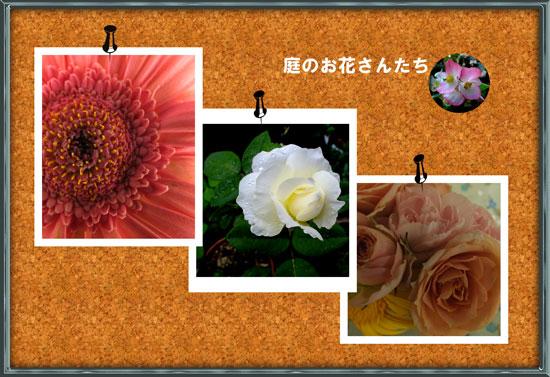 c0068639_2333855.jpg