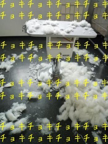f0177261_10334874.jpg