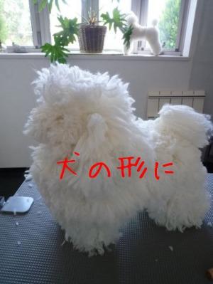 f0177261_10335918.jpg