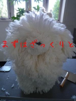 f0177261_1034949.jpg