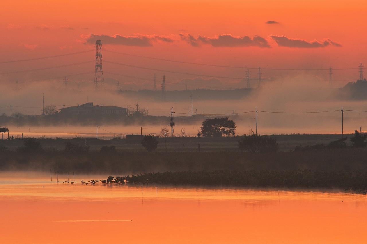 沼の夜明け 1_f0018464_22332747.jpg