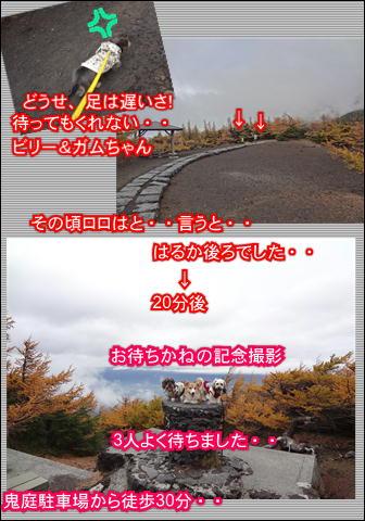 f0234395_1738476.jpg