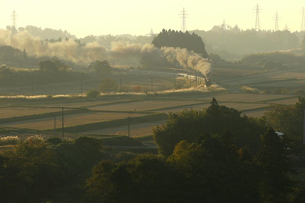 輝く秋と黒煙 - 2011年秋・磐西 -_b0190710_22112788.jpg