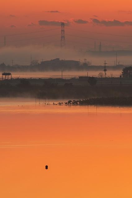沼の夜明け 1_f0018464_6392032.jpg