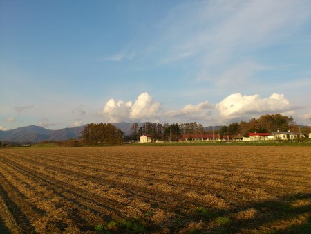 北海道の秋_b0106766_16493541.jpg