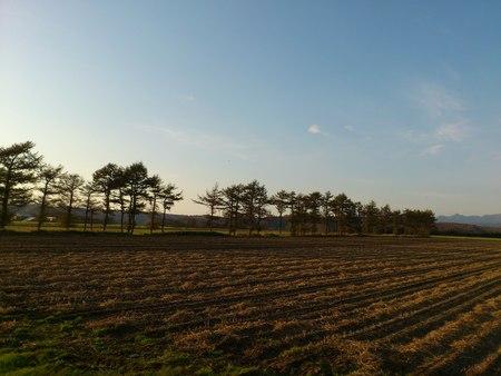 北海道の秋_b0106766_16493664.jpg