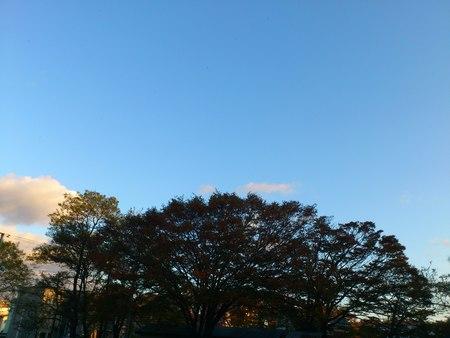 亀田八幡宮_b0106766_22185727.jpg