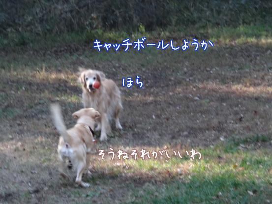 f0064906_17531185.jpg