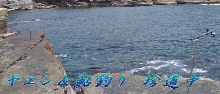 e0221831_18173624.jpg