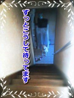 f0195543_21214923.jpg
