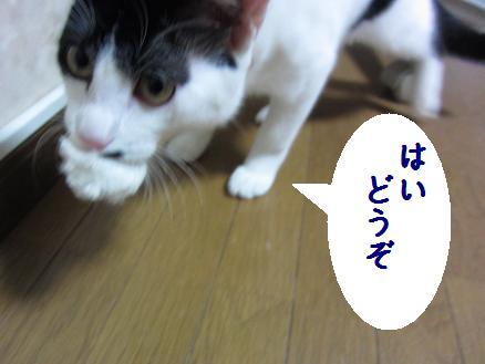 b0151748_13583080.jpg