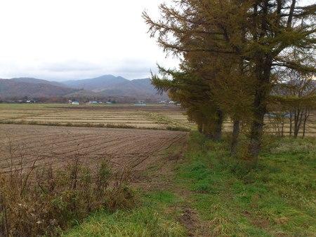 森町駒ヶ岳_b0106766_16485443.jpg