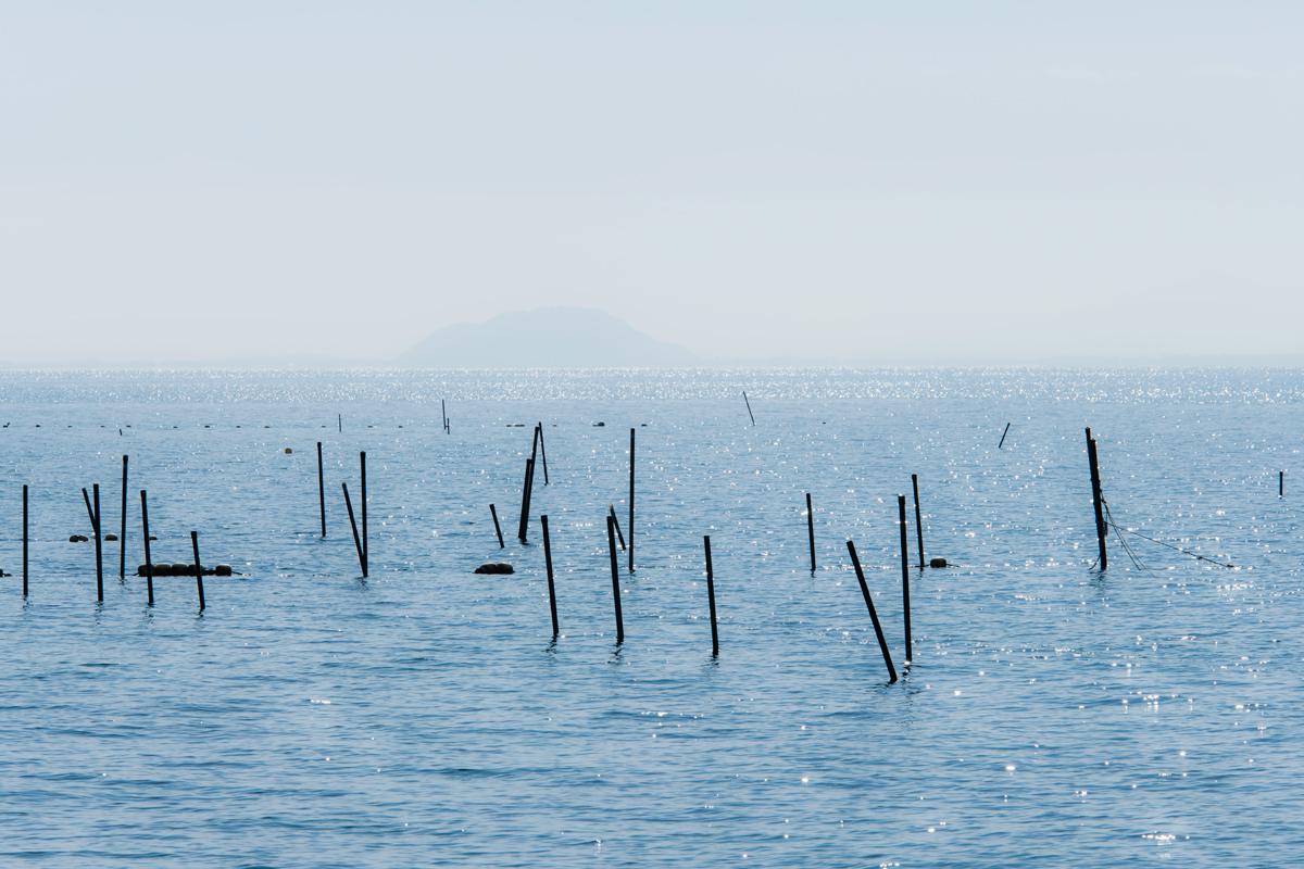 琵琶湖にて_f0021869_741633.jpg