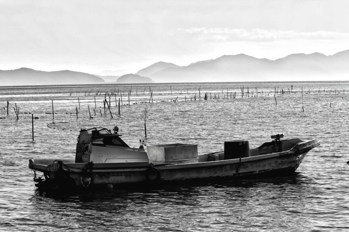 琵琶湖にて_f0021869_743124.jpg