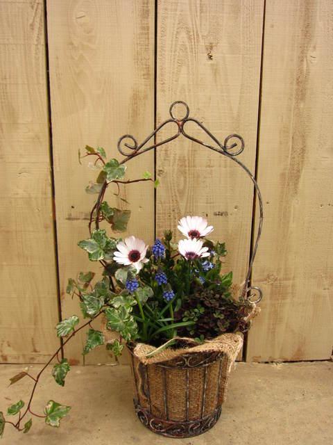 knot garden_e0254972_9412377.jpg