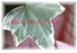 f0003174_10181674.jpg