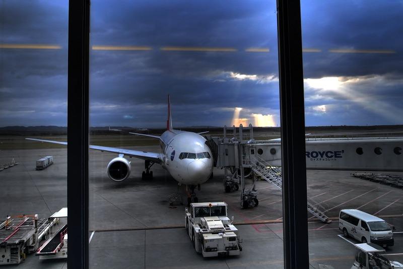 朝一便で東京へ_a0160581_1039126.jpg
